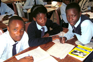 Grade 9 Pupils at Work